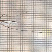 """Москитная сетка """"АнтиМошка"""" (Micro-Mesh)"""